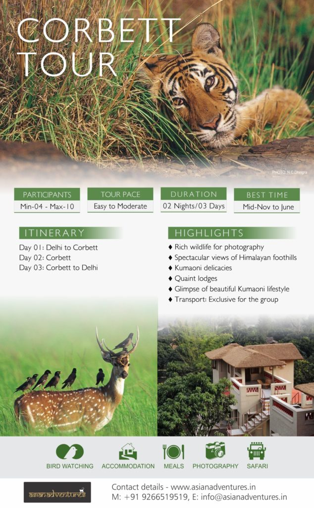 Corbett_Tour_Infographic_revised